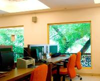 big picture windows bring the greenery of the tree outside into the work space.